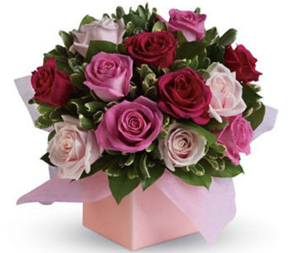 Picture of Blushing Roses